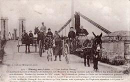 45 Meung Sur Loire, Les Anes De Meung - Other Municipalities