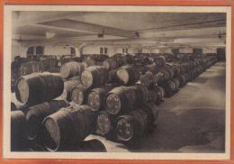 Carte Postale 51. Reims Champagne Louis Roederer Le Cellier Des Vins Nouveaux Pendant La Fermentation   Vendanges - Reims