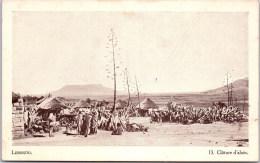 LESSOUTO - Cloture D'aloes - Lesotho
