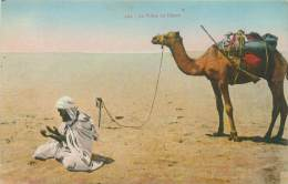 La Prière Au Désert - Algérie