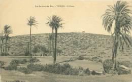 Sur La Route De Fez - TIFLED. - L'Oasis - Maroc