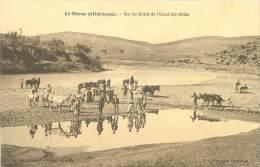 Sur Les Bords De L'Oued-Ed-Rébia - Maroc