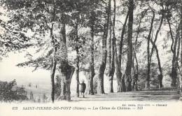 Saint-Pierre-du-Pont (Nièvre) - Les Chênes  Du Château - Edition Chatin - Carte ND Non Circulée - Arbres