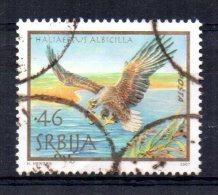 Serbia - 2007 - White Tailed Eagle - Used - Serbie
