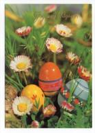 Joyeuses Pâques---Oeufs Décorés Et Fleurs (paquerettes) Cpm  N° 605/4  éd Biondetti--carte Italienne - Pâques