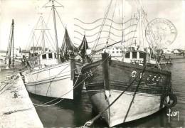 Photo Cpsm Cpm BATEAUX Et NAVIRES. Le Guilvinec. Bâteaux De Pêche Au Port. Pour Les Mureau 1967 - Bateaux