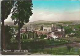 POGGIBONSI (SIENA) CASTELLO DI BADIA -FG - Siena