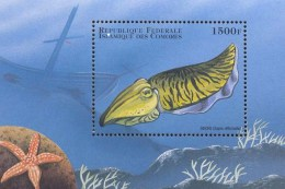 COMORES   831  MINT NEVER HINGED SOUVENIR SHEET OF FISH-MARINE LIFE  #   111-5  ( - Fische
