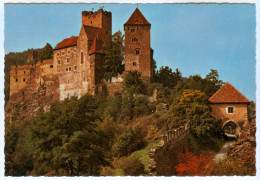 AK 2082 Hardegg An Der Thaya Im Thayatal Riegersburg Ritterburg 2092 Waldviertel Österreich A.d. Burg Austria Castle - Hollabrunn