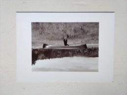 RODNEY SMITH IMAGINATIV PRODUCTIONS - Photographie