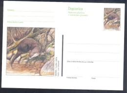 Slovenia Slowenien Slovenie Postal Stationery Card 1995: Fauna Animals; European Otter, Fischotter; Loutre (Lutra Lutra) - Rongeurs