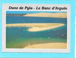 DEPT 33 - Dune Du PYLA - Le Banc D'Arguin - Vaby - - Arcachon