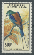 Upper Volta (Burkina Faso), Bird, Abyssinian Roller, 1965, MNH VF Airmail - Burkina Faso (1984-...)