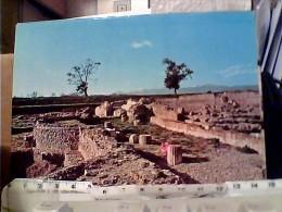 2 CARD  SCAVI  ARCHEO  DI SIBARI -N1975  FJ11377 - Cosenza