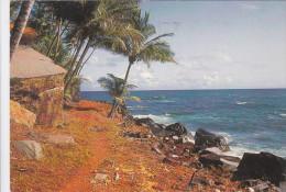 GUYANE - ILES DE SALUT - SENTIER A ST JOSEPH - Autres