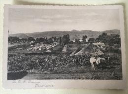 GIMMA PANORAMA  NV FG - Etiopia