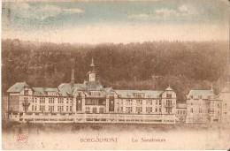 STOUMONT-LA GLEIZE (4987) - MEDECINE : Le Sanatorium Provincial Pour Hommes, à Borgoumont. Vue Générale. CPA Colorisée. - Stoumont