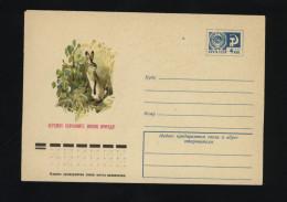 USSR 1975 Postal Cover Fauna Nature Hare  (331) - Autres