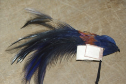 PLUME à CHAPEAU Tige OISEAU DES ILES  BLEU Electrique  Couleurs Chatoyantes 14 Cms - Headdresses, Hats, Caps