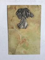 AK   RAPHAEL  KIRCHNER    PRE-1900.   EMBOSSED - Kirchner, Raphael
