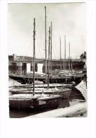 29 - CONCARNEAU. La Sereine Et Les Cotres Du Centre Nautique Des Glénans - 1958 - Voilier - Concarneau
