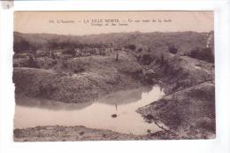 Argonne FILLE MORTE Reste De La Foret    Guerre 14 18 - Guerre 1914-18