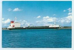 M.s. Cardissa - Tankers