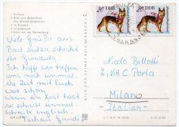 EAST GERMANY - BAD SULZA VOLKSSOLBAD VIEWS / THEMATIC STAMPS-DEUTSCHER SCHAFERHUND / DOG - Bad Sulza