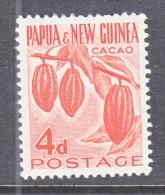 PAPUA  & NEW  GUINEA  140  *   CACAO - Fruits