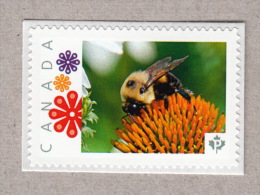 BEE ON ECHINACEA FLOWER Picture Postage MNH Stamp Canada2016 [p16/03be7/4]