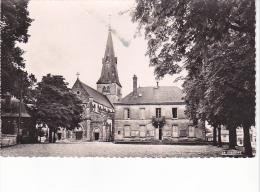 25704  Suippes - L'église Et L'hotel De Ville -MA 806 Ed Duclos La Cigogne -