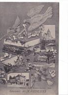 25705 Souvenir De Vaudeurs (89) - Multivues Ed. Poulain Rocher Sens -