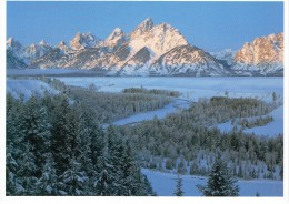 CPM ETATS-UNIS WYOMING MOOSE - Grand Teton National Park - 1998 - Etats-Unis