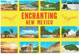 CPM ETATS-UNIS NOUVEAU-MEXIQUE DIVERS - Multivues 2000 - Etats-Unis