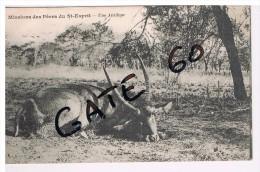 CPA Missions Catholiques   -  Afrique   Missions Des Pères Du Saint Esprit   -  Une Antilope - Christentum