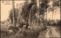 Wemmel ; Beekstraat - Rue Du Ruisseau - Wemmel