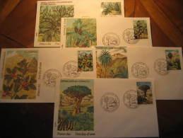 LAS PALMAS DE GRAN CANARIA Canarias 1973 Flora Draco Arbol Tree Palma Palm 5 Fdc Spain Spd Cancel Cover - 1971-80 Lettres