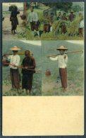 China Sternberg Farmers Multiview Hong Kong Postcard - China