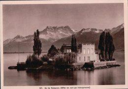 Ile De Salagnon Vaud Suisse, Effet De Nuit (501) - Contre La Lumière