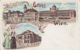 Litho Gruss Aus Wien Nicht Gelaufen Ansehen !!!!!!!!!!!! - Sonstige