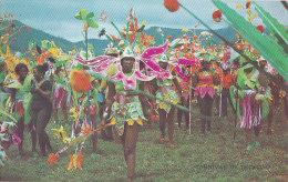 Cpa CARNIVAL In TRINIDAD - Trinidad