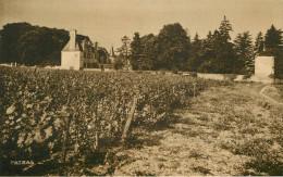 Dép41 - Chateaux - Vignoble - Vigne - St Georges Sur Cher - Saint Georges Sur Cher - Domaine Des Coudraies -Vue Générale - Autres Communes