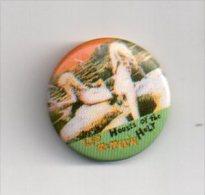 REF A6 : Pin's Pin Badge Ancien Vers 1980  LED ZEPPELIN - Beroemde Personen