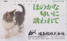 Télécarte Japon / 330-21494 - ANIMAL - CHAT - CAT Japan Phonecard - KATZE Telefonkarte - GATO  - KAT - 2683 - Gatos