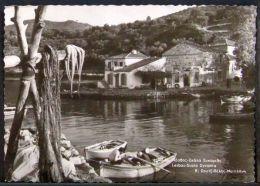 Greece - Circulated Postcard 1962 Lesbos Scala Sycamia - Grèce