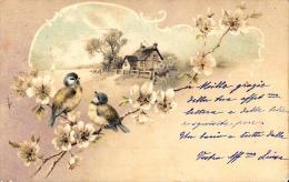 [DC2668] CPA - UCCELLINI SU RAMO FIORITO - Viaggiata - Old Postcard - Uccelli