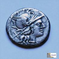 Fam. RENIA - 135/134 AC. - Roman
