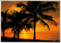 NEW  CALEDONIA   NOUMEA  SUNSET AT ANSE VATA      (SCRITTA) - Nuova Caledonia