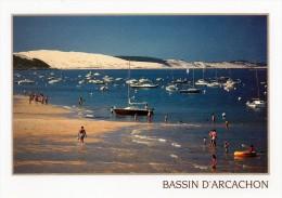 (D)  33 Bassin D'arcachon  Dune Du Pyla - Arcachon