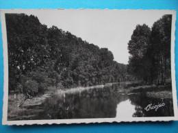 17 : TONNAY-BOUTONNE :  La BOUTONNE,VUE Du PONT ,  C.P.A., Carte En Très Bon état , - Autres Communes